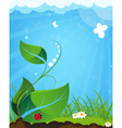 Young plant and ladybug vector image