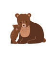 brown bear and cub isolated on white background vector image vector image