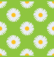 daisy chamomile flower seamless pattern vector image vector image