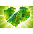 green heart-leaves vector image