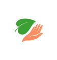 hand with green leaf logo natural organic vector image