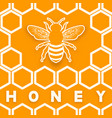 Honey bee on honeycomb orange background