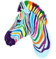 zebra head portrait from multicolored paints vector image