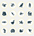 zoo icons set with goose ox sea horse and other vector image