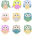colorful owls isolated on white vector image