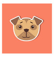 canine head of boxer dog cartoon icon close-up vector image