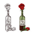 hand drawn sketched rose in wine bottle vector image vector image