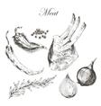 meat steak sketch drawing designer template vector image vector image