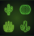 wild cactuses neon light icons set vector image vector image
