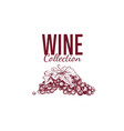 wine shop label cover 5 vector image vector image