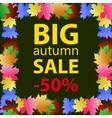 Big autumn sale design template poster vector image