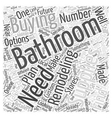 Bathroom Remodeling Supplies Your Buying Options vector image vector image