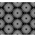 Flower black and white pattern