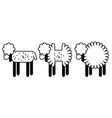 Set of 3 lambs with different shapes