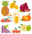 set of fresh fruits isolated on white vector image vector image