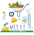 wheelbarrow and garden equipment vector image