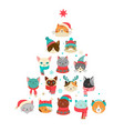 cats christmas tree vector image