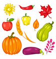 harvest set fruits and vegetables vector image vector image