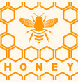 honey bee silhouette on honeycomb background vector image vector image