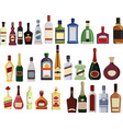 set bottles alcohol isolated vector image
