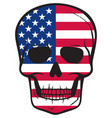 united states flag skull american design vector image vector image