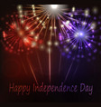 beautiful fireworks in national flag colors vector image