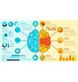 Left And Right Brain Infographics vector image