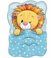 cartoon sleeping lion in a bed vector image vector image