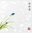 cicada and little snail on leaves grass vector image vector image