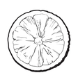 Colorful hand drawn round slice of unpeeled orange vector image