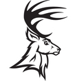 Deer head profile vector image