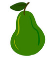 green flat pear on white background vector image vector image
