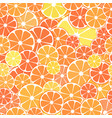 seamless pattern background sliced halves vector image vector image