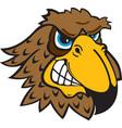 falcon head logo mascot vector image vector image