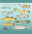 freshwater fish north america vector image