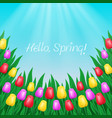 multicolored tulips on sky background vector image