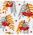 Seamless rowan berries and leaves vector image vector image