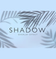 shadow overlay effects background vector image