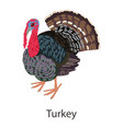 turkey icon isometric style vector image vector image