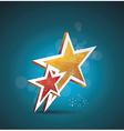 Two gold stars 100 satisfaction guarantee vector image