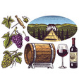 vineyard and wine set grapes and wooden barrel vector image vector image