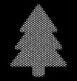 white halftone fir-tree icon vector image
