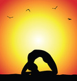yoga pose silhouette vector image vector image