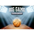 Background night basketball stadium in the vector image vector image