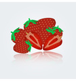 colorful strawberry eps10 vector image vector image