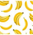 realistic detailed fruit banana seamless pattern vector image vector image