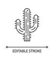 saguaro cactus linear icon vector image vector image