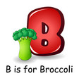 vegetables alphabet b is for broccoli vector image