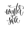 winter sale - hand lettering inscription text vector image vector image