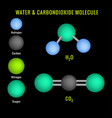 carbondioxide and water molecule 3d structure vector image